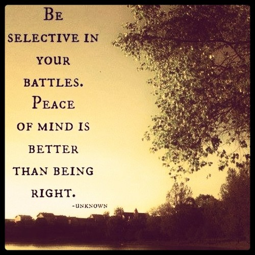 having-peace-of-mind-is-very-important-which-is-which-you-should-stay-away-from-battles-that-likely-to-cause-misery-in-your-life-choose-to-walk-on-the-positive-path-in-your-daily-endeavors. Quotes for the Mind to Help You Achieve Success and Happiness.