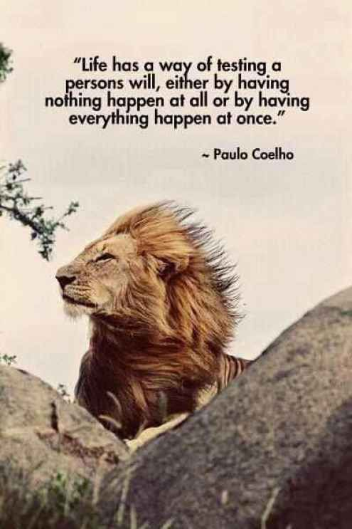 Paulo Coelho Quotes About Going Through Some Tough
