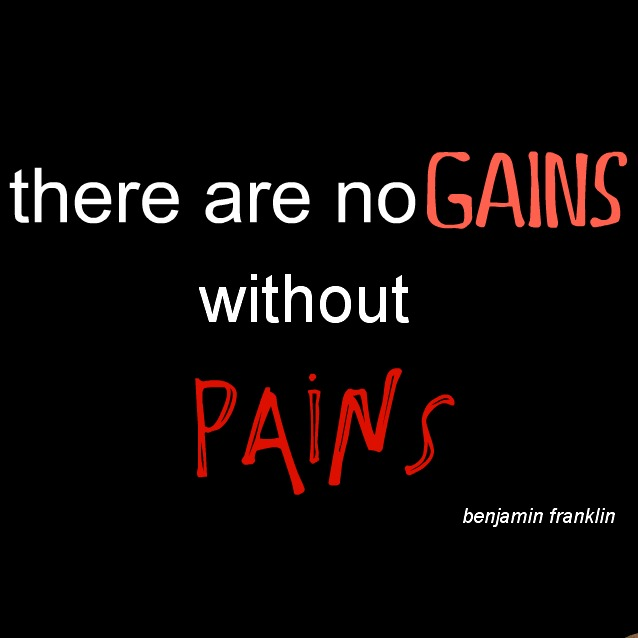 no pain no gains proverb List of proverbs used in the english language menu no news is good news no pains - no gains not all who own a lyre are lyre-players once bitten twice shy.