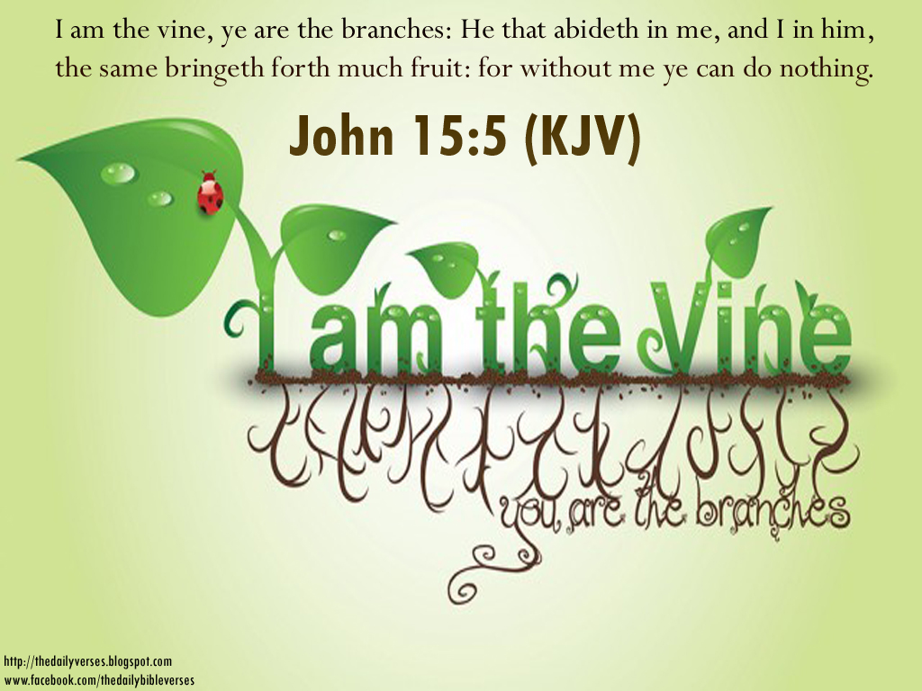 Bible verses from king james version quotes messages scriptures