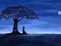 buddha meditation picture