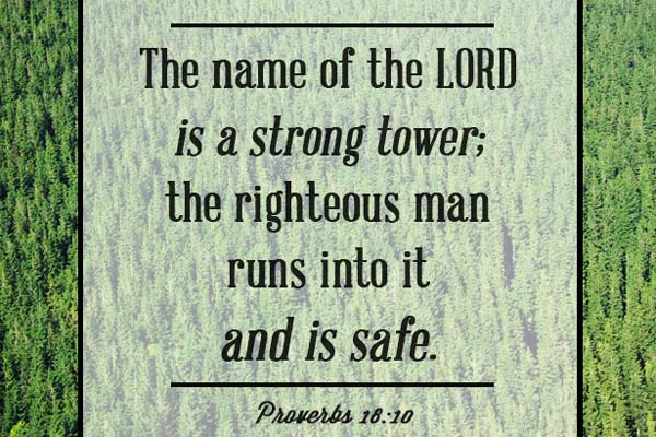 Bible Proverbs about feeling safe with Go - God's protection