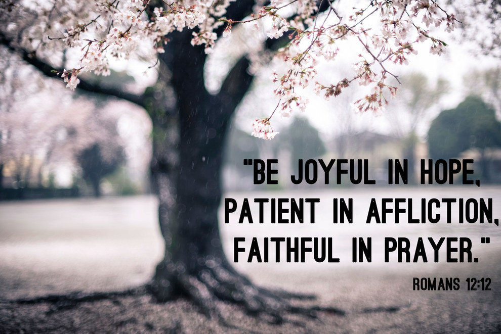 Bible Verses Quote about being joyful, patient and faithful - hope - affliction - prayer