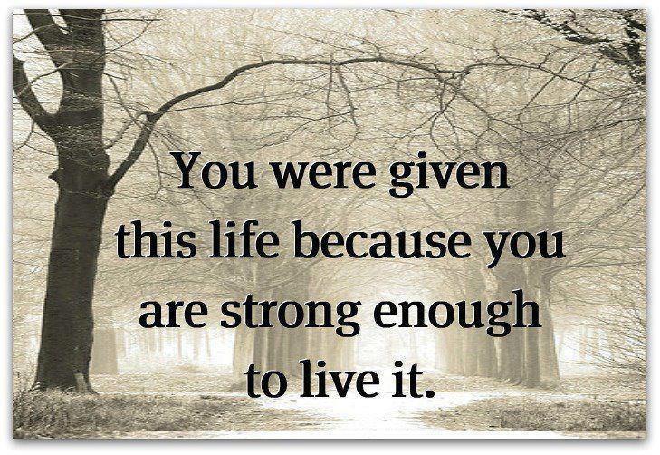 Bildresultat för life struggles quote