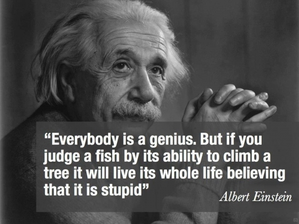 wonderful-albert-einstein-image-quote-about-everyone-isgenius-in-their-own-way-if-you-focus-on-the-things-that-the-know-the-most.